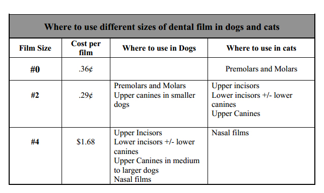 Why use veterinary dental radiographs xrays in vet dental practice